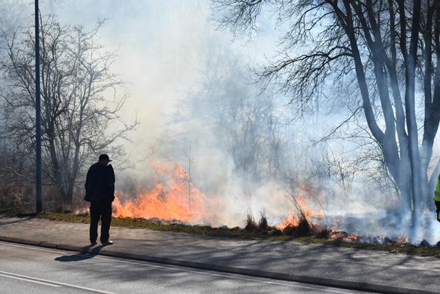 Markbrand i Helsingør - kraftig røg