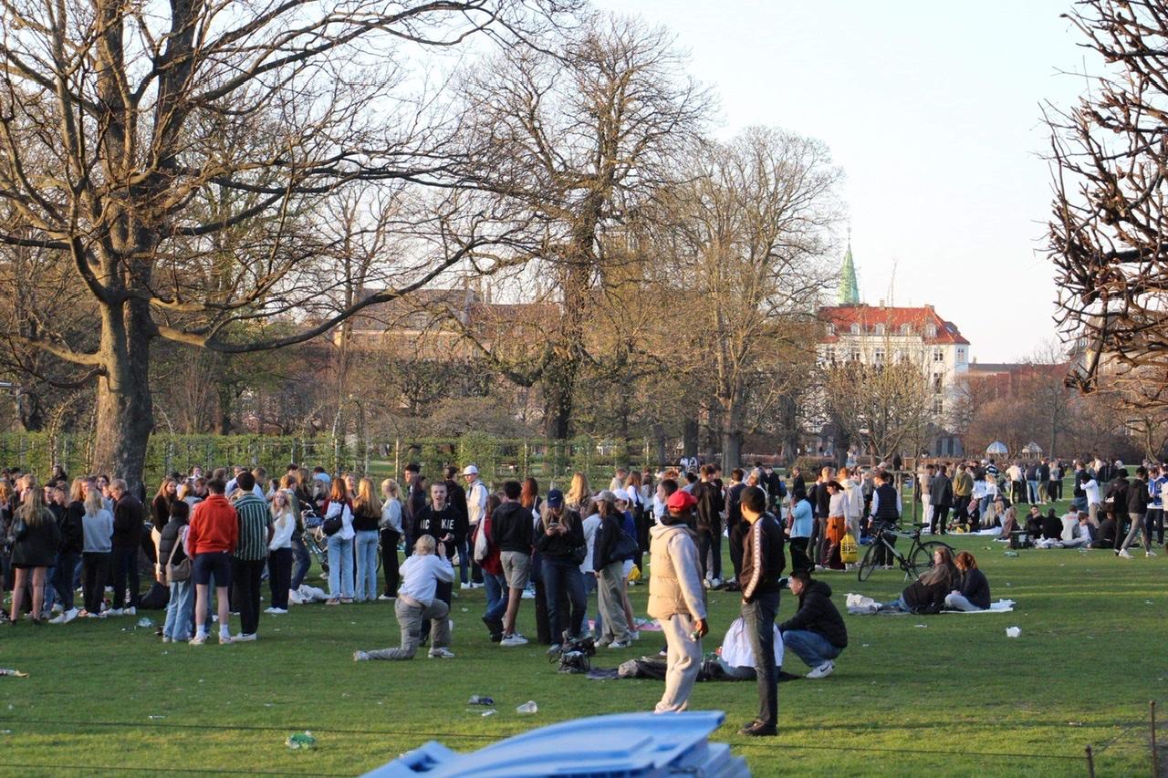 Unge mennesker i hundredevis i Kongens Have i København