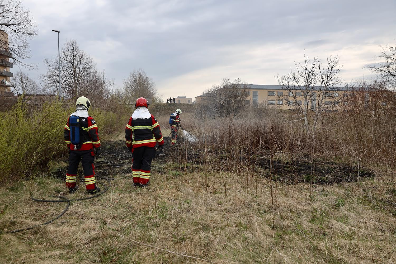 Naturbrand i Høje-Taastrup