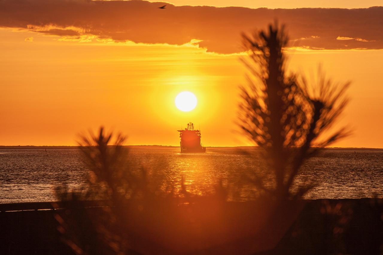 Solnedgang over Esbjerg havn - en legesyg sæl i vandet
