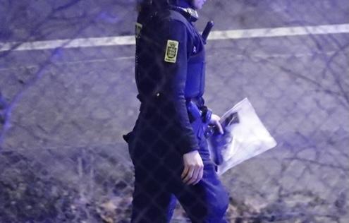 Våbenfund ved stor politiaktion - flere anholdte