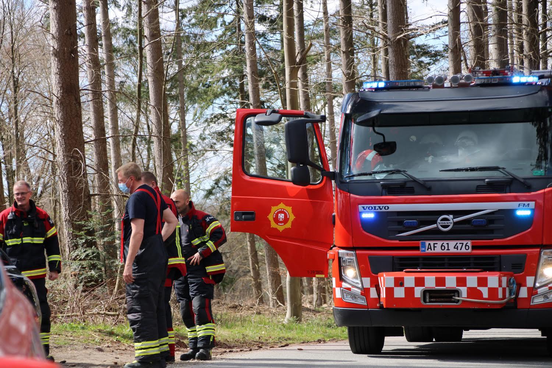 Naturbrand i Borup - startet af bilbrand