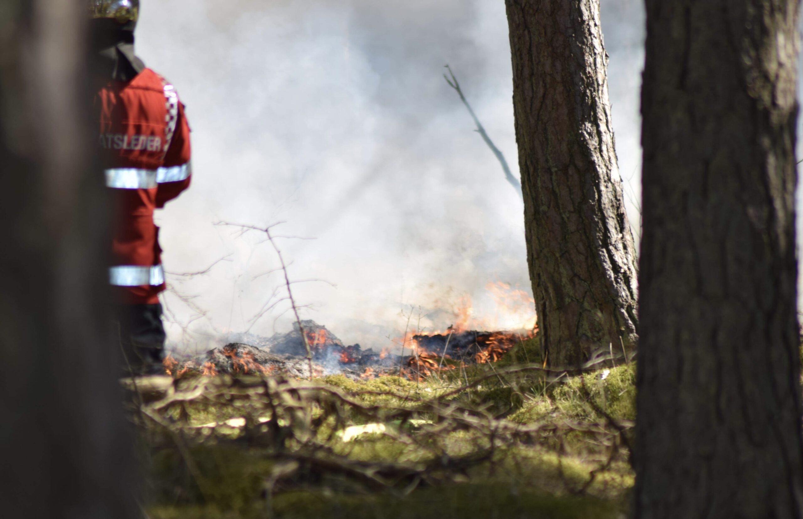 Naturbrand i Frederiksværk