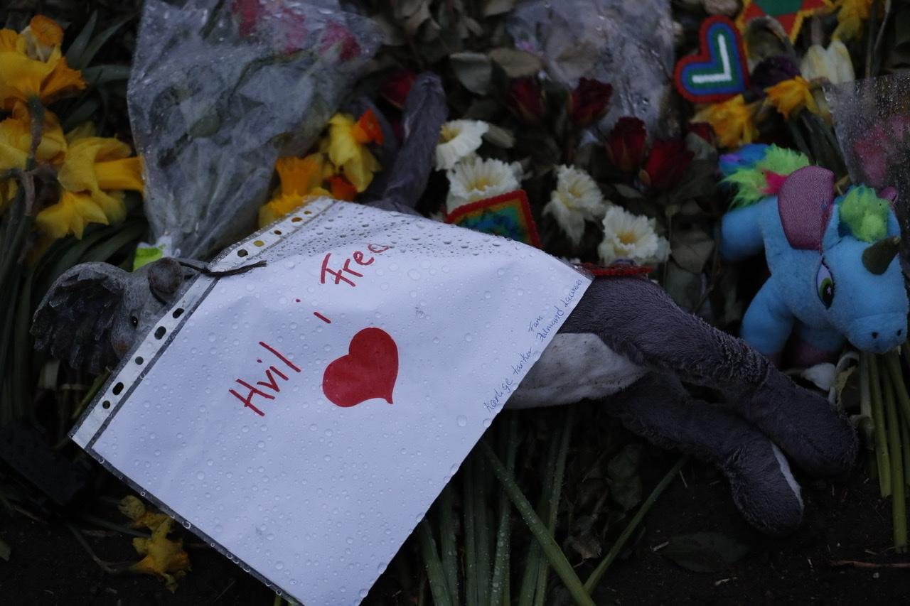 11-årig pige dræbt - 53 cykler langs vejen