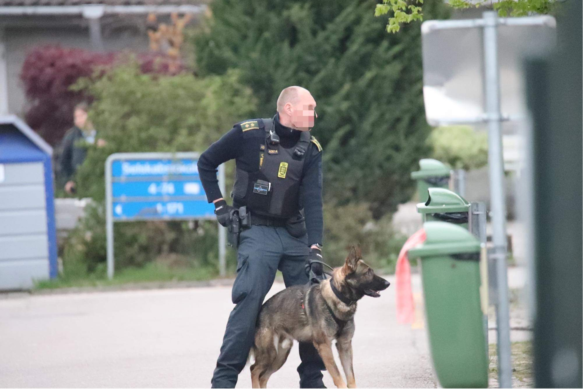 Stor politiaktion - politihund nedlægger mand med kniv