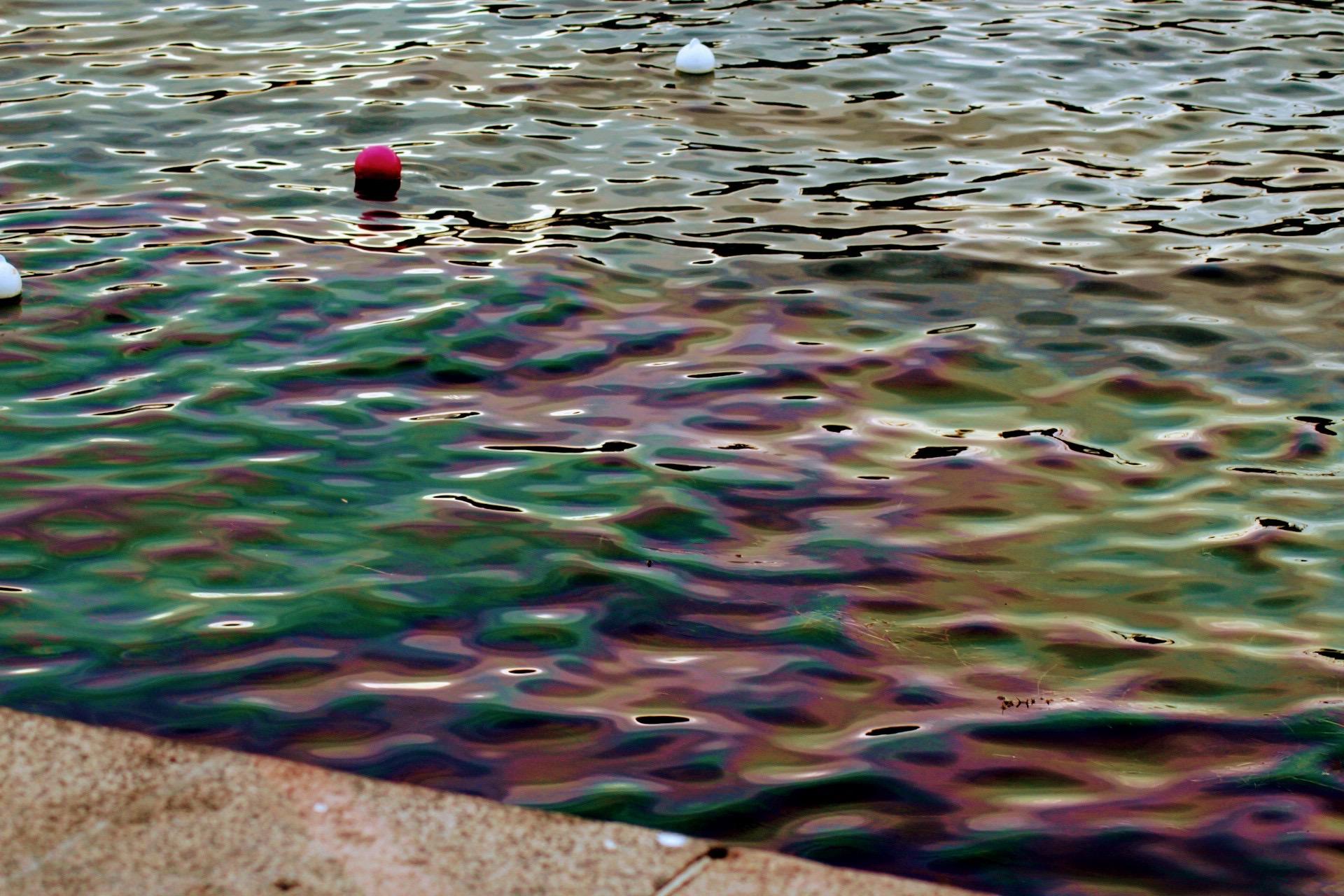 Større olieforurening i Bryggens badevand