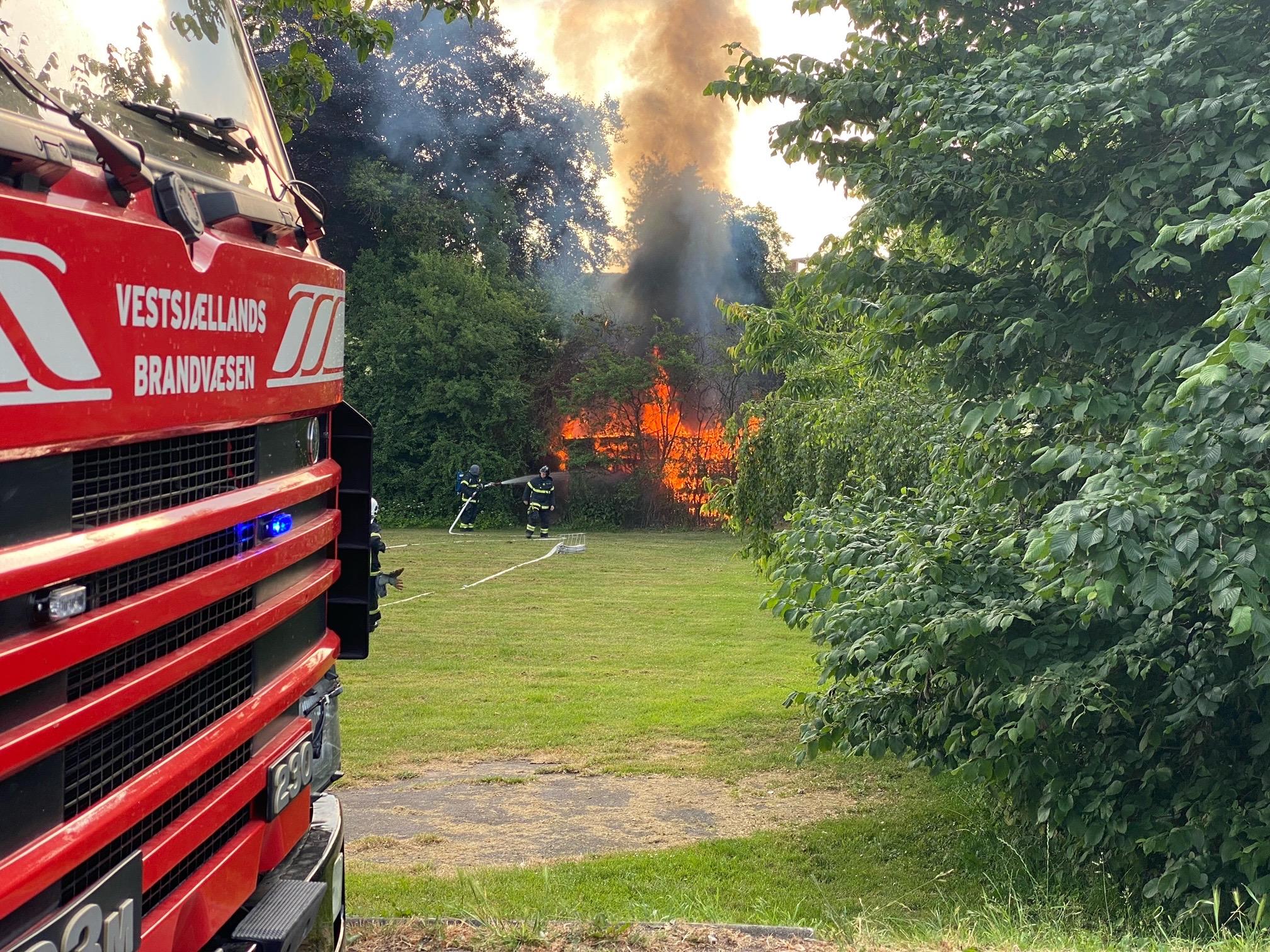 Ild i levende hegn/ træer i Nykøbing Sjælland