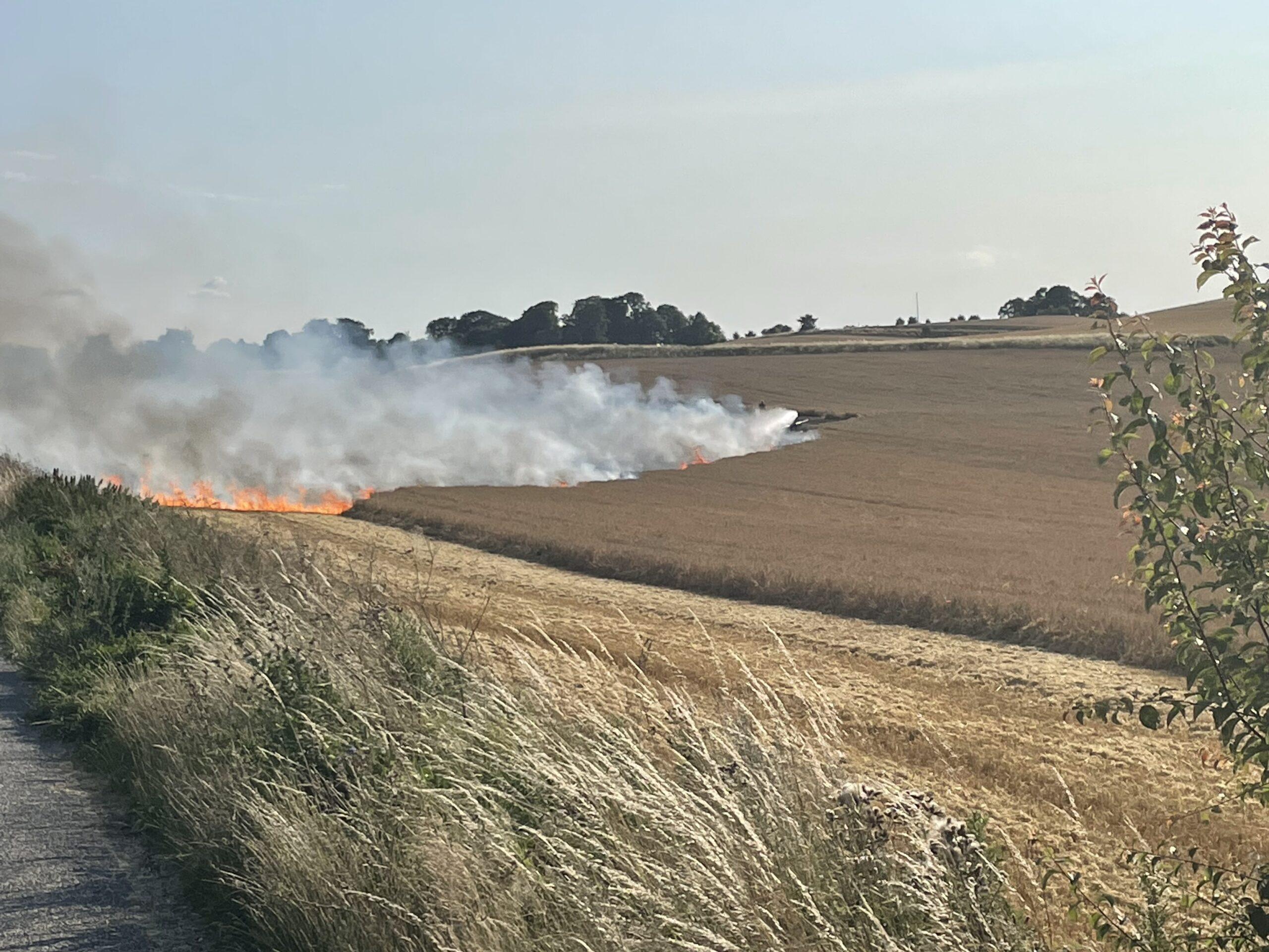 Brand på mark - brandvæsnet er på stedet