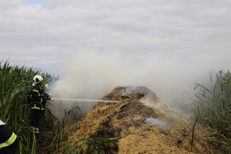 Brand på majsmark - brandvæsnet er på stedet