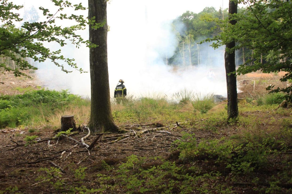 Affyring af fyrværkeri mod fængsel - naturbrand