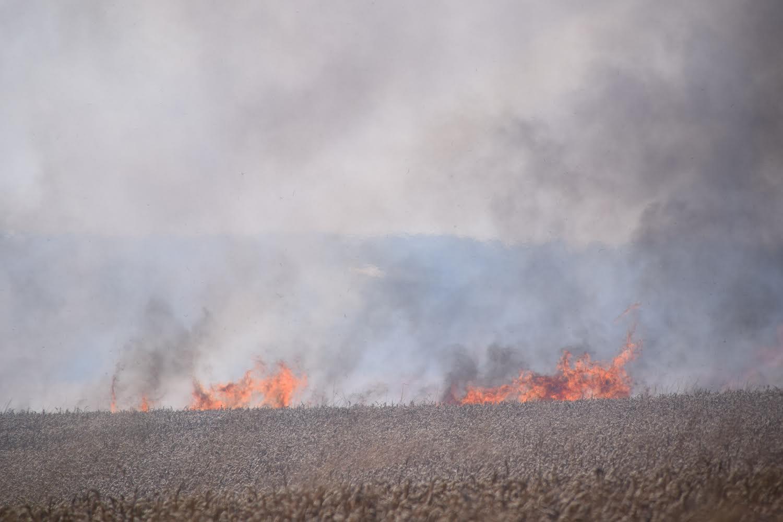 Uhøstet mark i brand - røgen kan ses på lang afstand