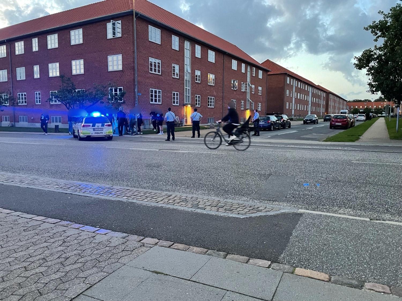 Politi talstærkt til stede - person bidt af politihund