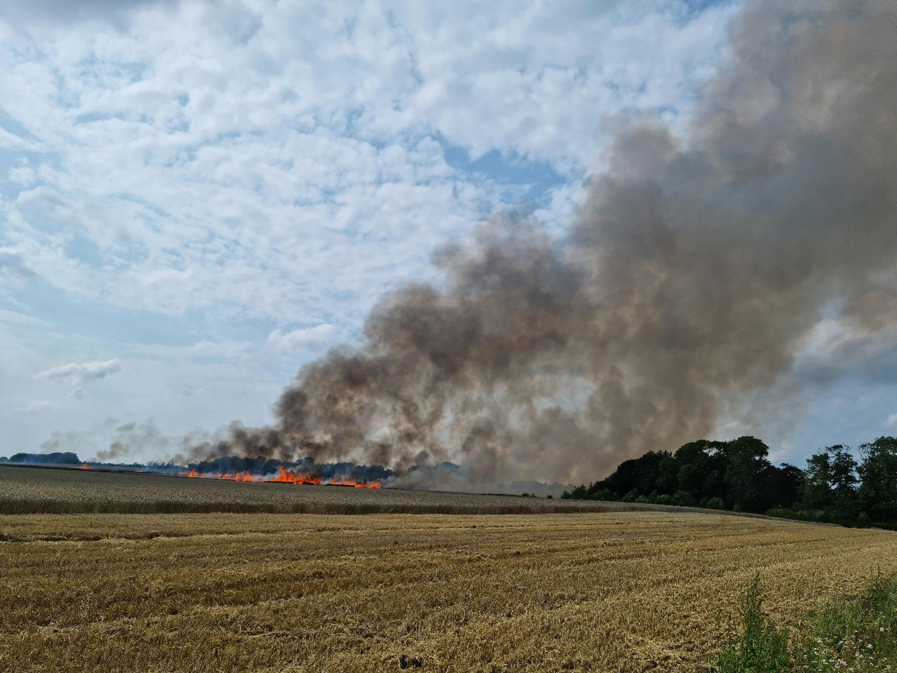 Markbrand antændt af brændende mejetærsker i Ansager