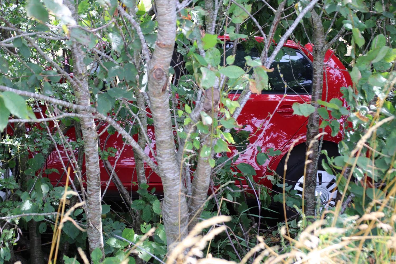Kvinde kørt galt - endte i grøft mellem træer