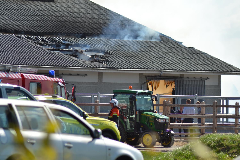 Brand på gård - dyr i fare