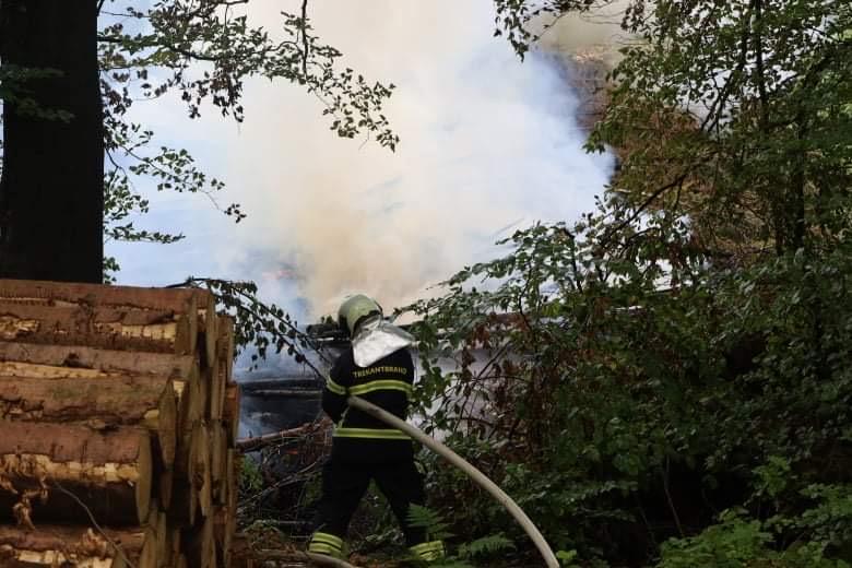 Mulig påsat skovbrand i Egtved