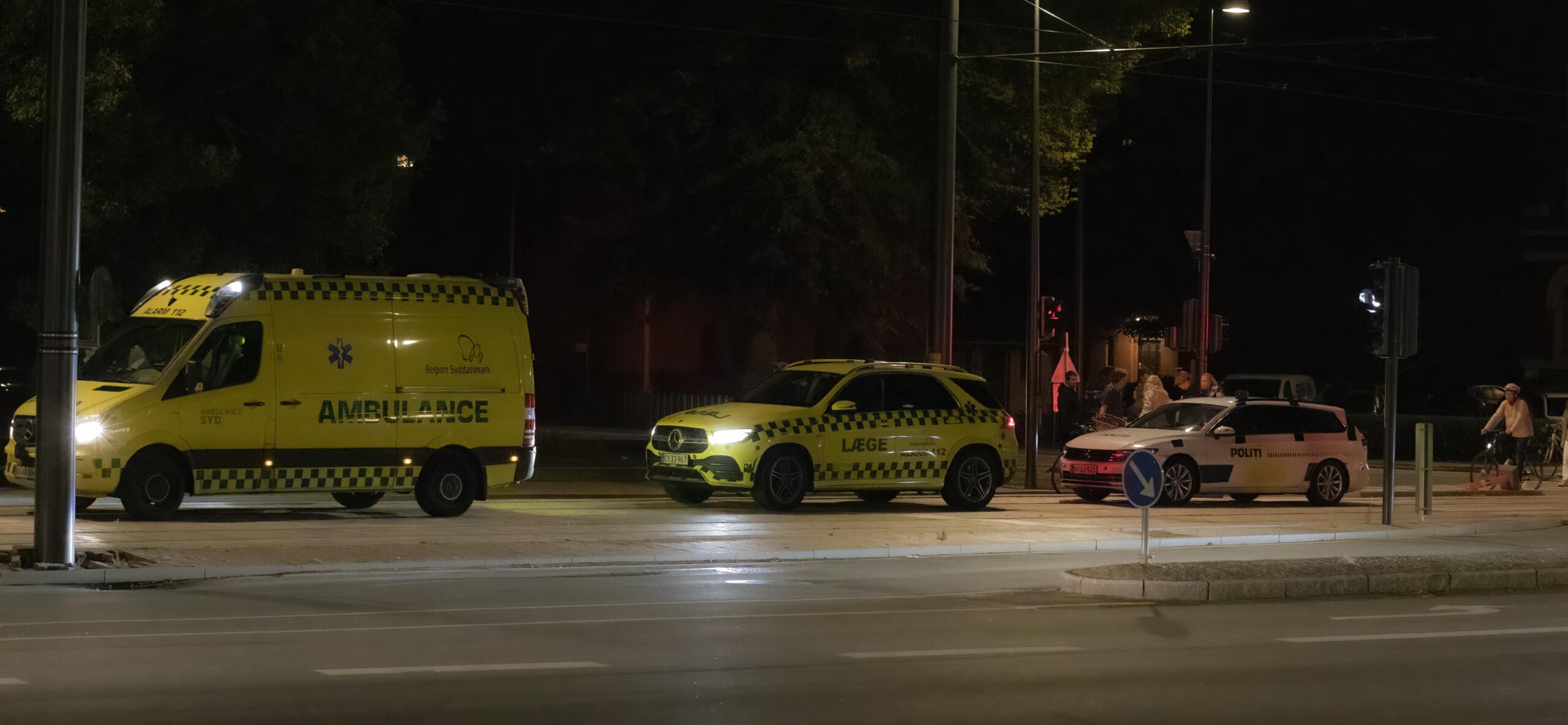 Politi og ambulance til stede i Kongens have