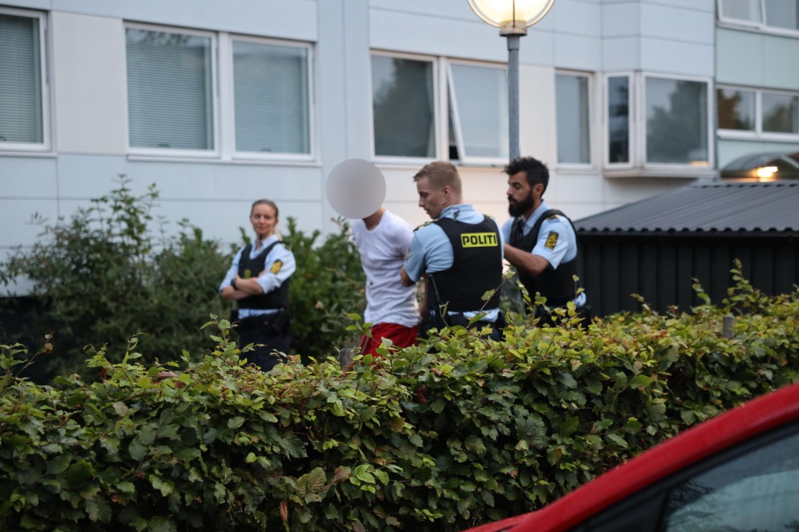 Flere anholdte i Ballerup - større politiaktion